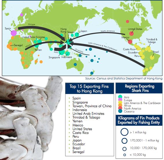 paesi che esportano fig 2